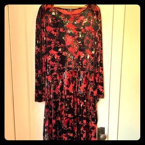 Velvet NWT long Zara Dress